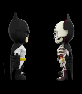XXRAY Dc Comics Batman 4D