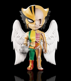 XXRAY Dc Comics Hawkgirl