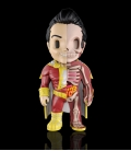 XXRAY Dc Comics Shazam