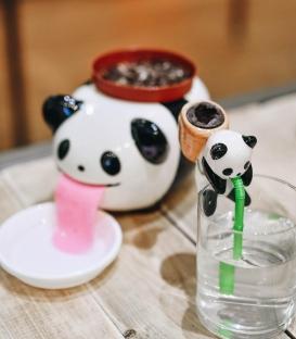 Peropon PAPA Panda, Plante à pousser