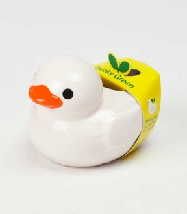 Ducky Green - White
