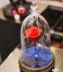 """Enceinte La Belle & la Bête """"Rose enchantée"""""""