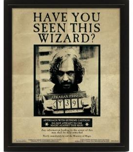 Cadre 3D Lenticulaire Harry Potter Sirius Black