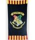 Hogwarts Harry Potter 2D String Lights