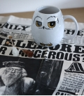 Mug Harry Potter Hedwig Oeuf