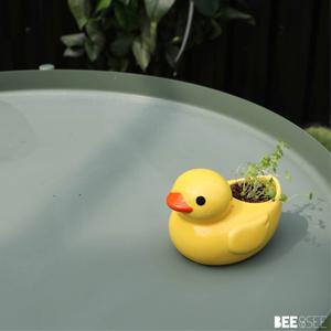 Ducky green